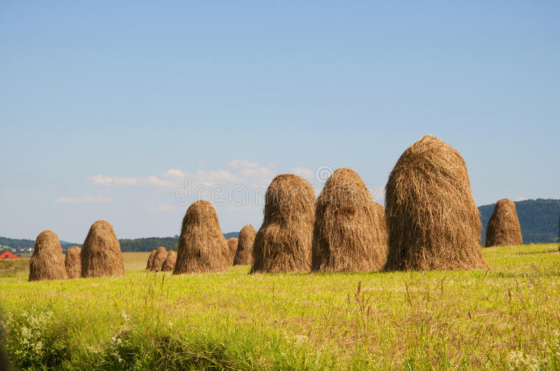 Download Haystacks stock photo. Image of autumn, spring, bale - 26814712