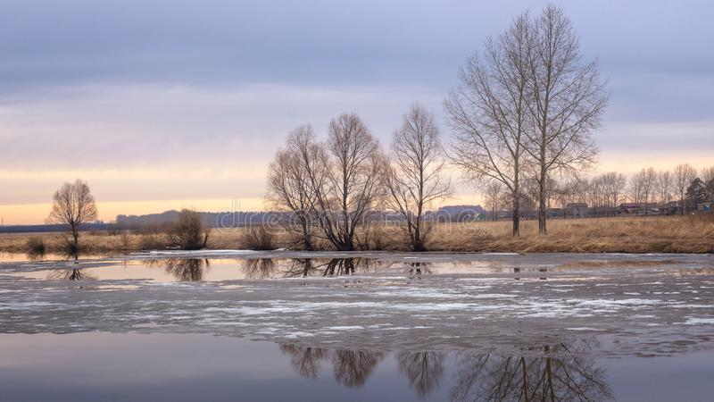 Spring sunset panorama with trees on the river Bank and ice, Russia, Ural,. April royalty free stock photos