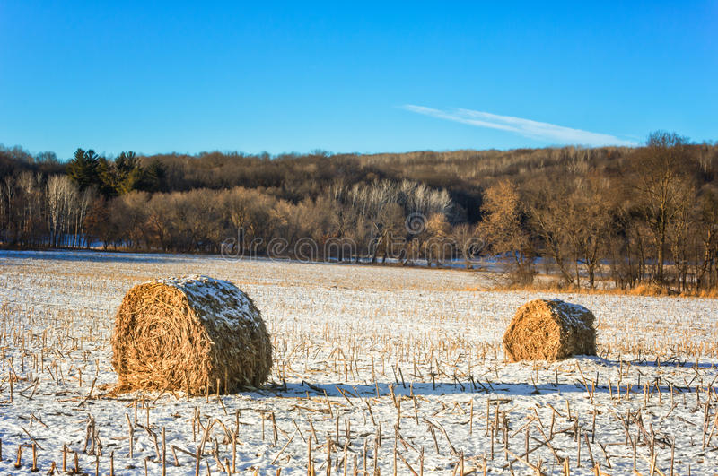 Haystacks en el campo congelado imágenes de archivo libres de regalías
