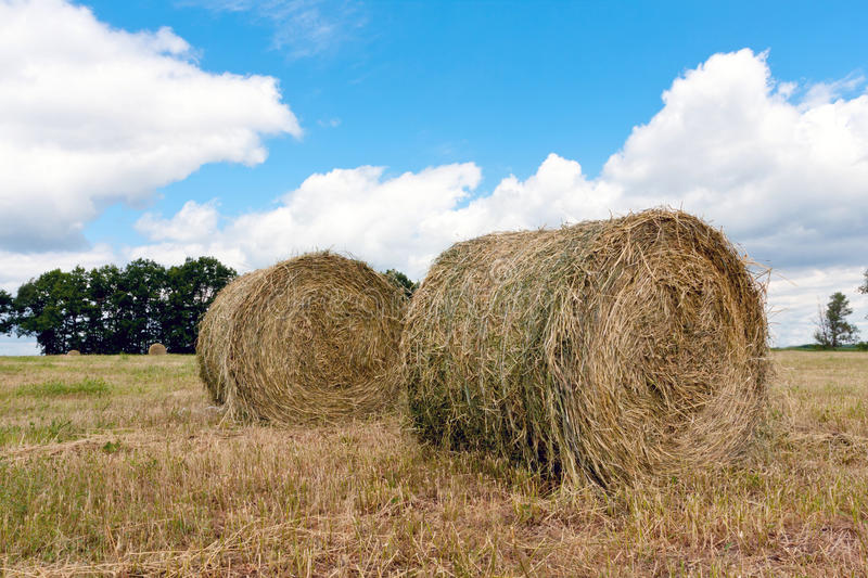 Download Haystacks on filed stock photo. Image of nature, gold - 25552896
