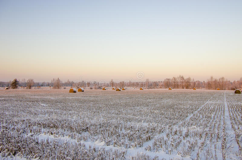 Haystacks on the frozen field stock photography