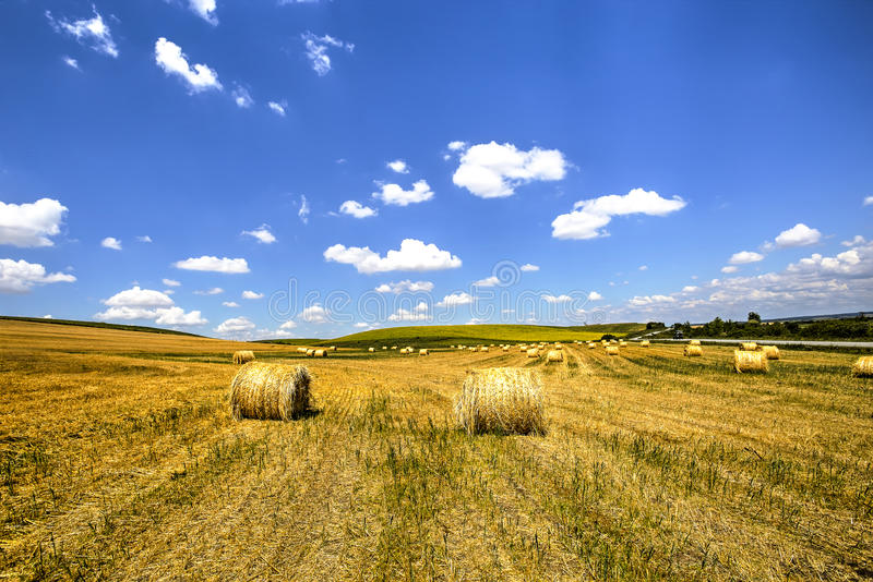 Haystacks after harvest royalty free stock photos