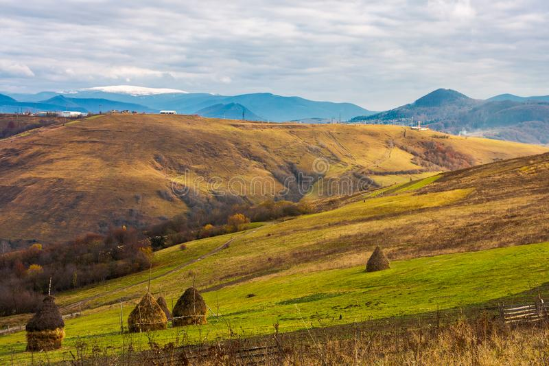 Haystacks on the rural fields stock photography