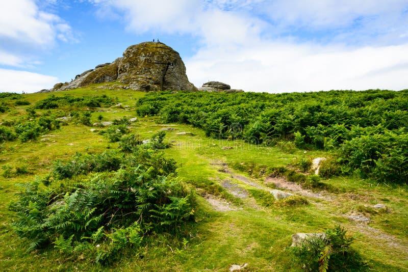 Haytorrotsen, Dartmoor stock foto