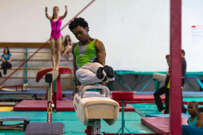 Haz competente del caballo de los gimnastas foto de archivo libre de regalías