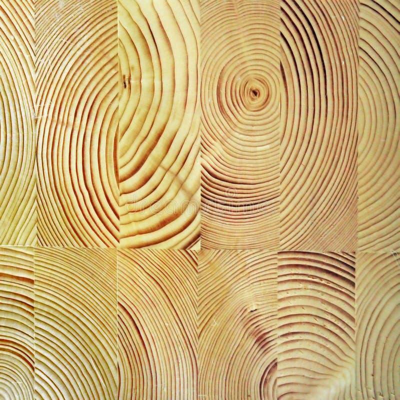 Haz de madera pegado imágenes de archivo libres de regalías