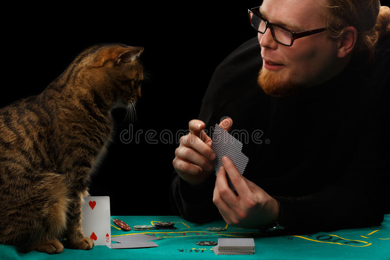 Hazardzista i kot zdjęcia royalty free