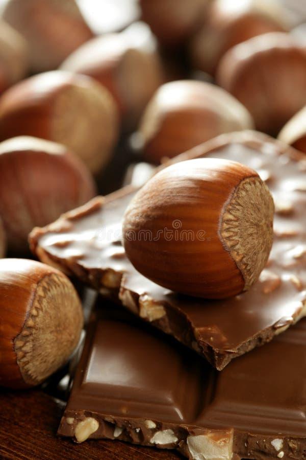 Hazelnoten en chocolade in bruin milieu stock fotografie