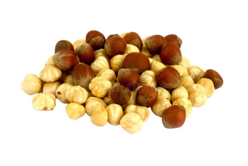 Download Hazelnut stock image. Image of forest, diet, color, eatables - 14469021
