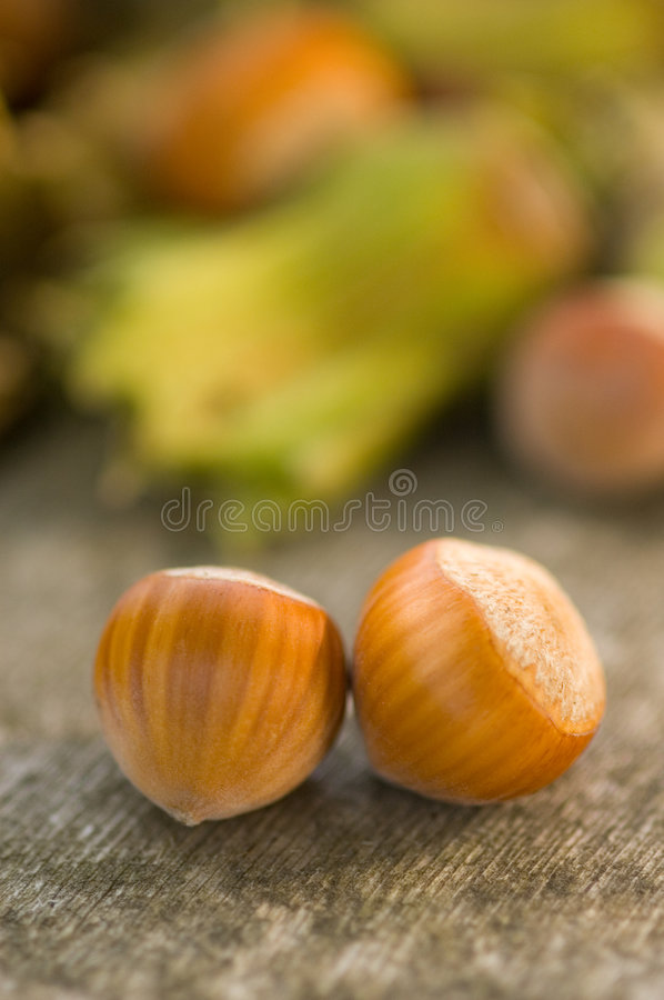 Free Hazelnut Stock Photography - 3061442