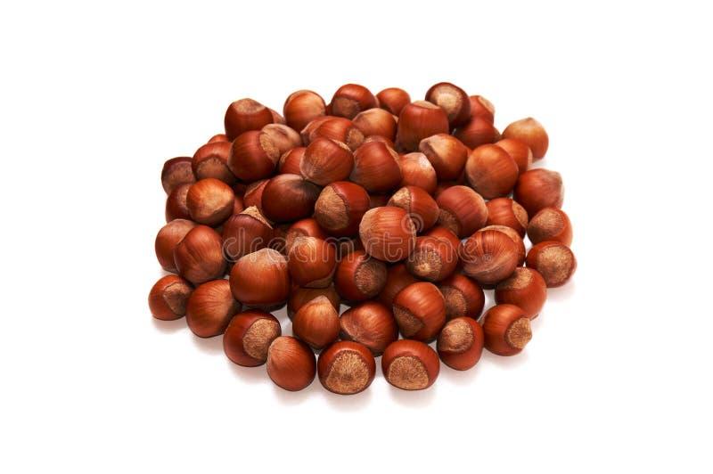 hazelnut Avelã orgânica fresca Macro Nuts Fundo do alimento imagens de stock royalty free