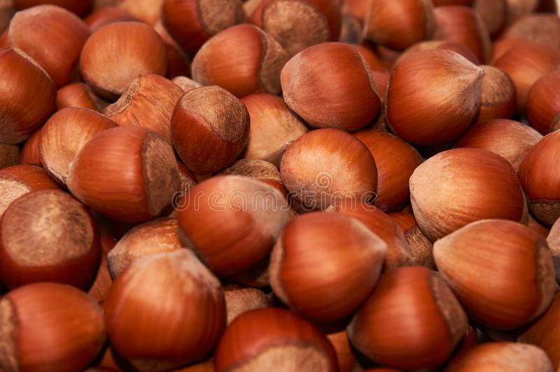 hazelnut Avelã orgânica fresca Macro Nuts Fundo do alimento fotografia de stock