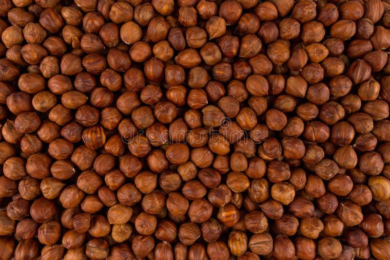 Hazelnut close-up Background. Heap of peeled hazelnuts. royalty free stock photography