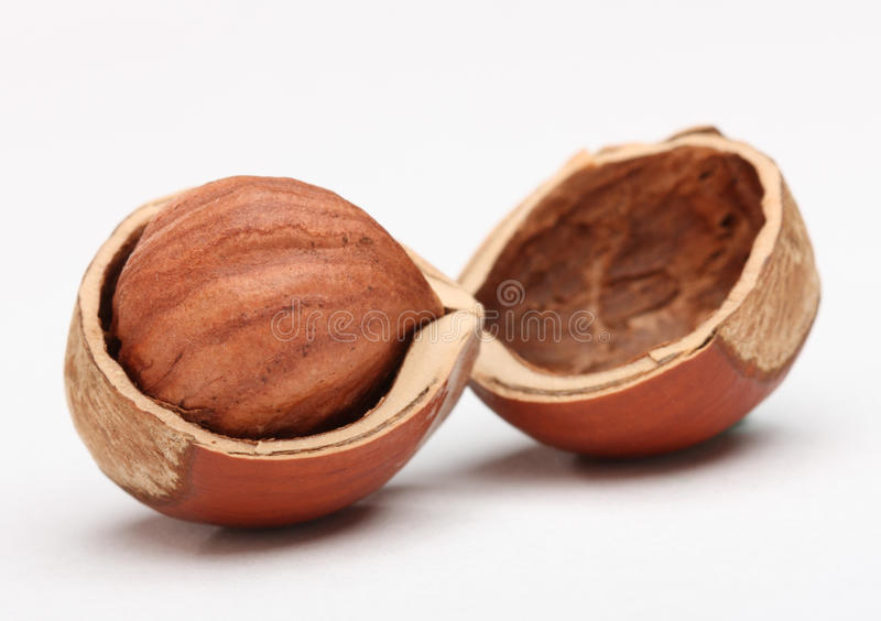 Download Hazelnut In Cracked Nutshell Stock Image - Image: 16829729