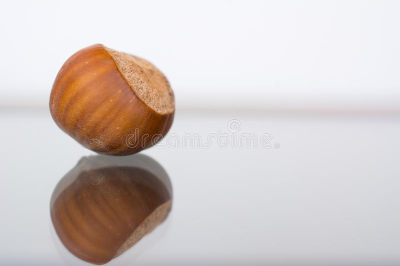 Hazelnuts in shells on the glass table stock image