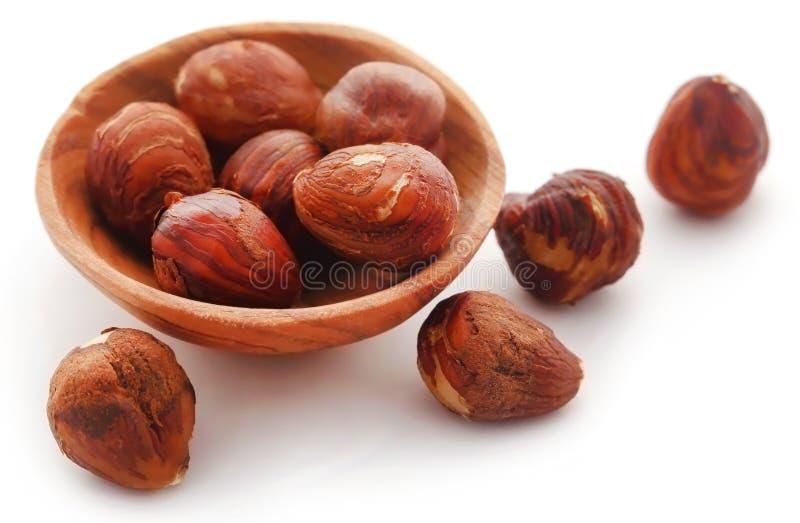 Hazelnut. Isolated over white background royalty free stock images