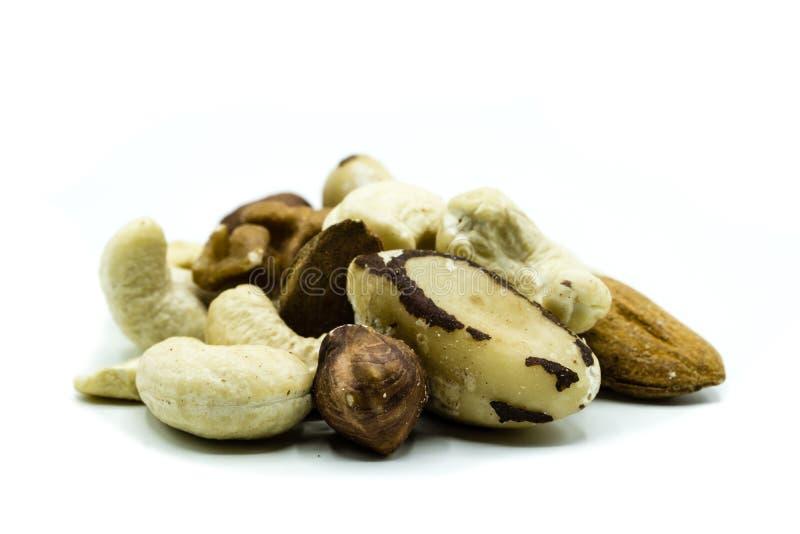 Hazelnut, paranut, migdał, orzech włoski, nerkodrzewu nasiona dokrętki mieszanka odizolowywająca na białym tle zdjęcia royalty free