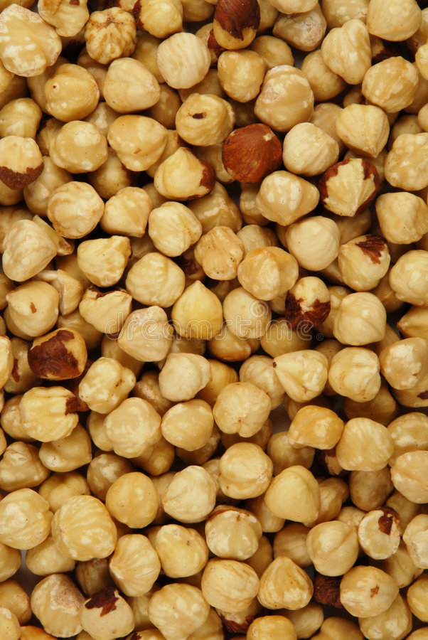 Download Hazelnut texture stock image. Image of snacks, food, cooking - 2613037