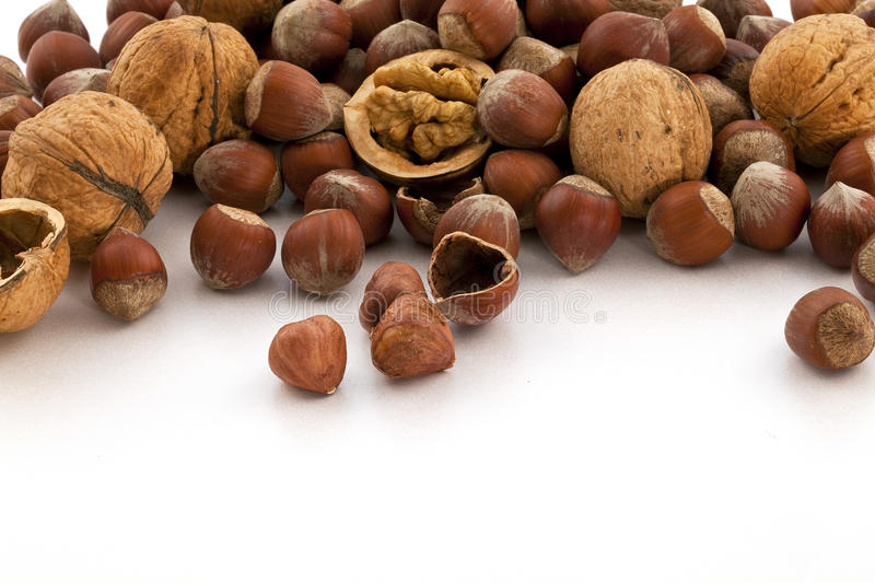 Download Hazelnut and walnut group stock photo. Image of brown - 16100626
