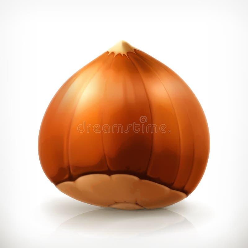 Hazelnut, wektorowa ikona ilustracja wektor
