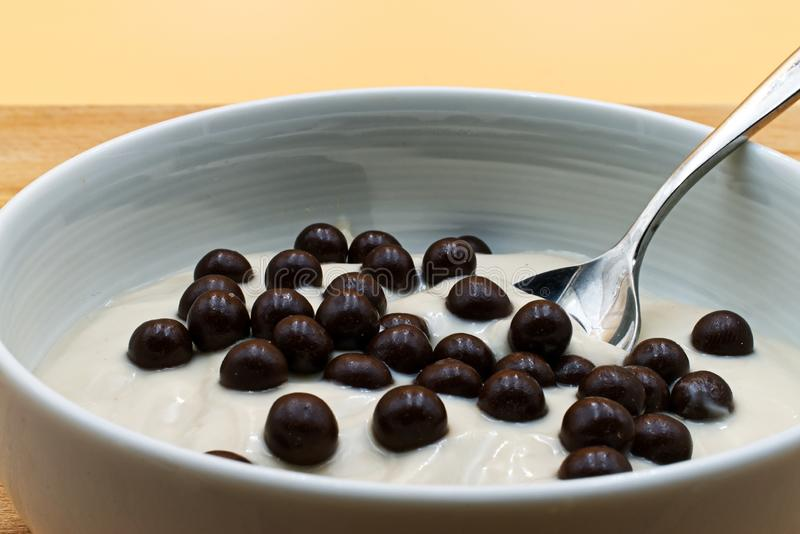 Hazelnut yogurt with chocolate crispies in a white cup on wooden table. stock images