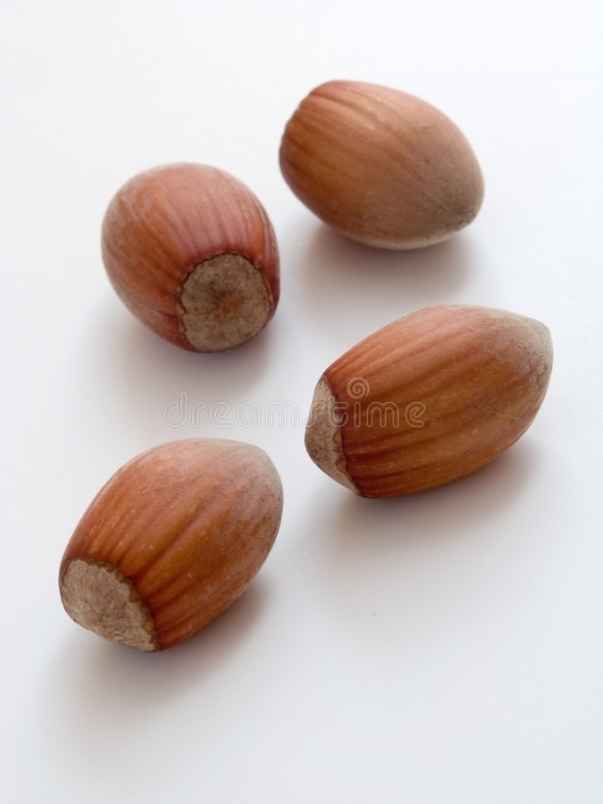 Download Hazelnuts Royalty Free Stock Images - Image: 198219