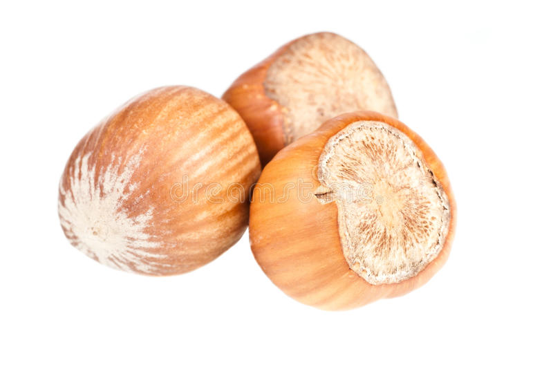 Download Hazelnuts stock photo. Image of hard, snack, yellow, nutrition - 28668428