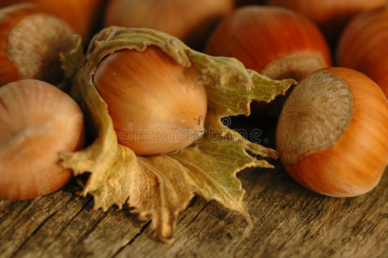 Hazelnuts. On the wooden table royalty free stock image