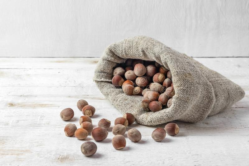 Hazelnuts in a bag on an old white background. Burlap nuts royalty free stock image