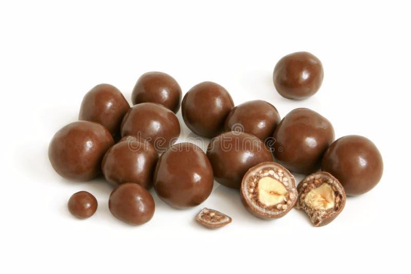 Hazelnuts in chocolate royalty free stock photo