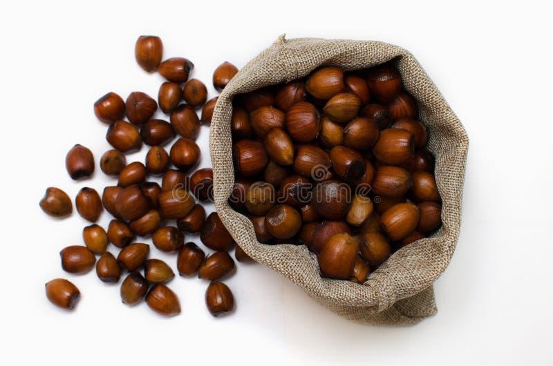 Hazelnuts, filbert w burlap worku na bia?ym tle rozsypisko lub sterta hazelnuts obraz stock