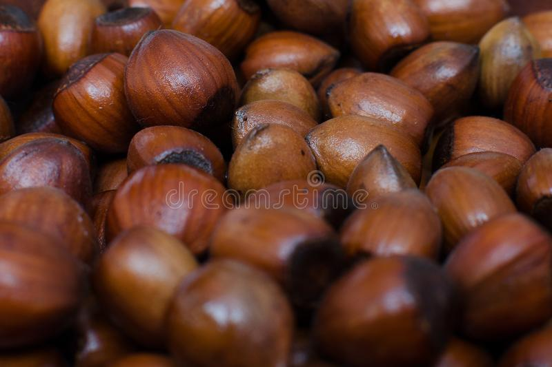 Hazelnuts scattered on boards, photographed from above, forming a uniform background royalty free stock photos