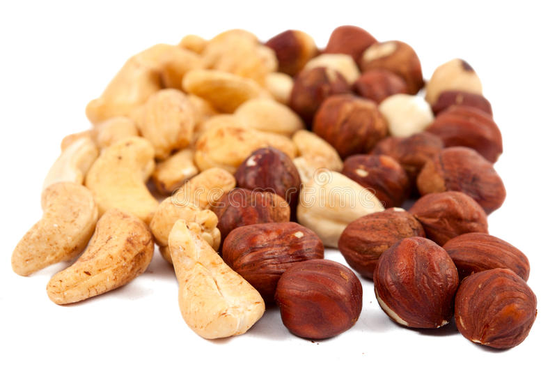 Download Hazelnuts isolated stock image. Image of filbert, fresh - 25506415