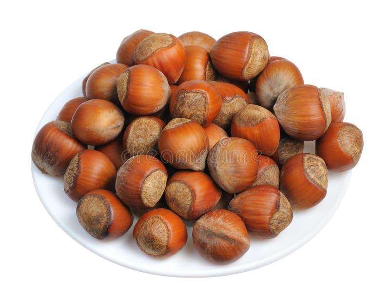 Hazelnuts, Isolated Royalty Free Stock Image
