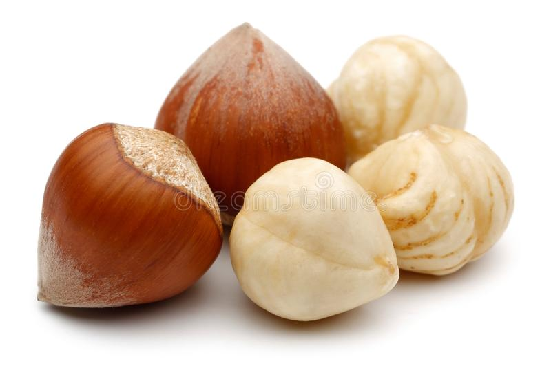 Hazelnuts isolated on white background royalty free stock image