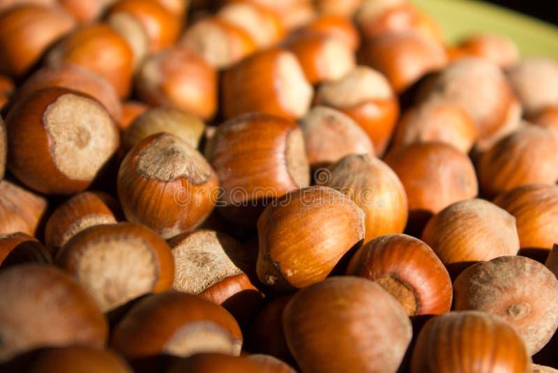 Hazelnuts na dużym zieleń talerzu obraz stock