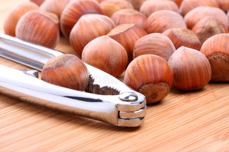 Download Hazelnuts with nutcracker stock image. Image of nutrition - 22832897