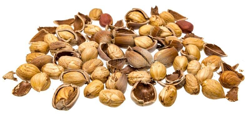 Hazelnuts pękający otwierają z skorupami i hazelnut nasionami obrazy stock