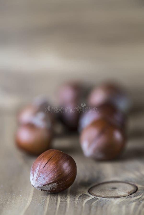 Download Hazelnuts stock photo. Image of cobnut, food, background - 33664230