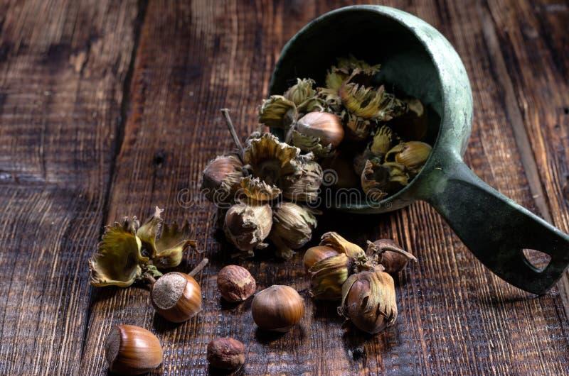 Hazelnuts w pucharze hazelnuts rozpraszali Frontowy widok Drewniany tło obraz royalty free