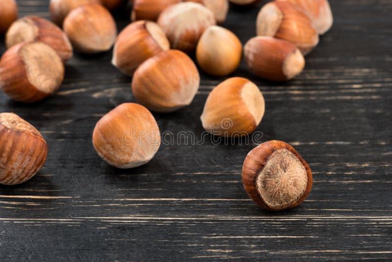 Hazelnuts w skorupie zdjęcie royalty free