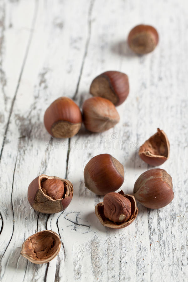Download Hazelnuts on white wood stock photo. Image of group, open - 23641228