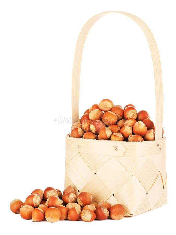 Hazelnuts In Wooden Basket royalty free stock photo