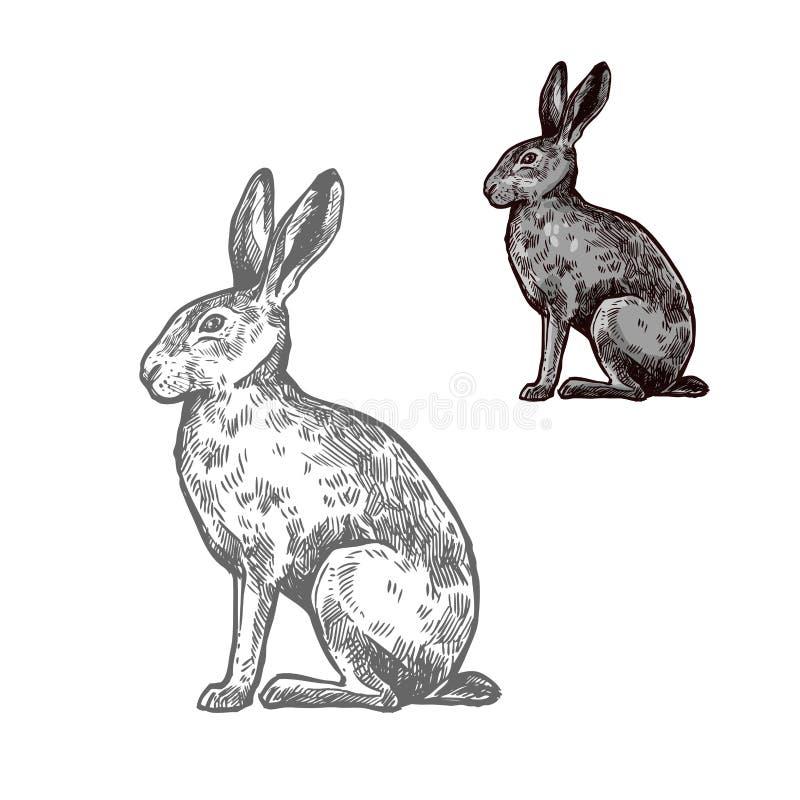 Hazen of konijn dierlijke schets voor aardontwerp stock illustratie