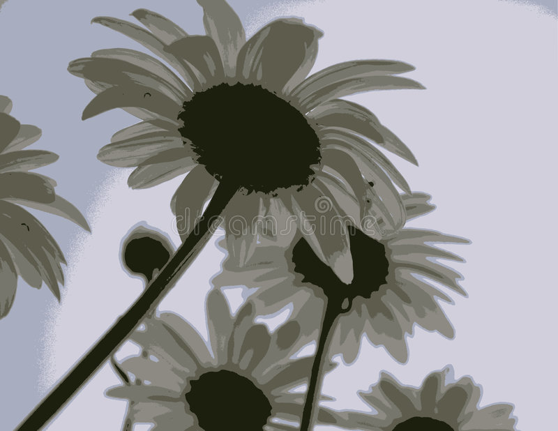 Hazy Daisies. Illustration of a group of flowers looking toward the sunset stock illustration