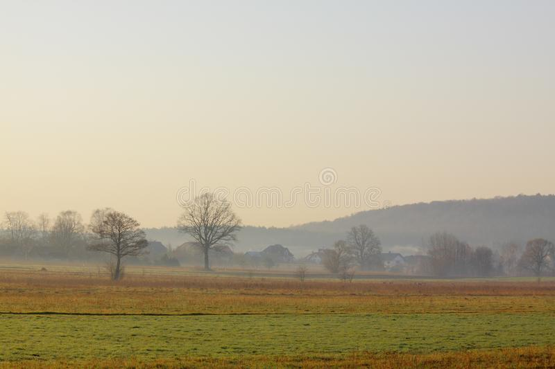 Hazy morning over meadows. Poland, The Holy Cross Mountains royalty free stock photos