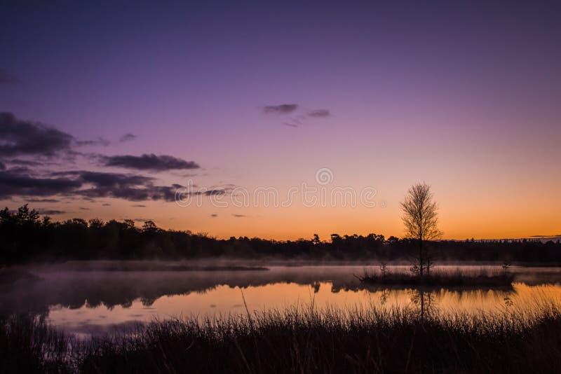 Hazy sunrise stock photography