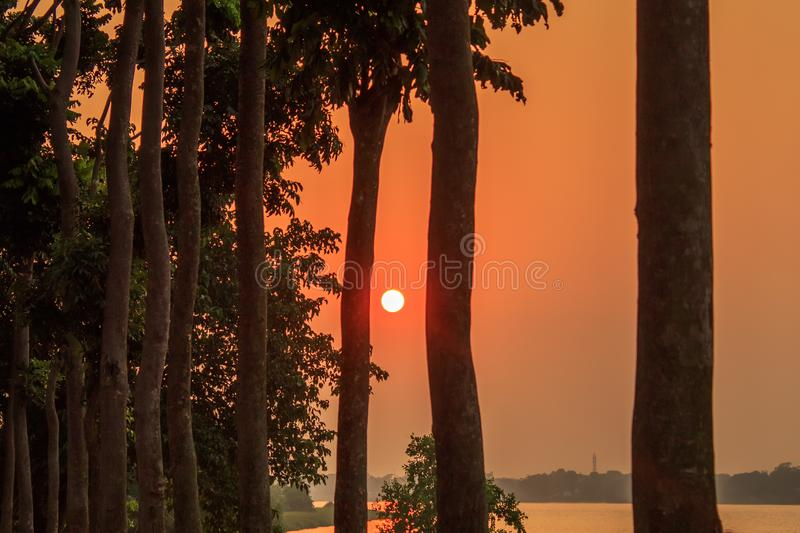 Hazy Sunset through treeline. Sun lighting in the evening. Golden hour view of rural india city royalty free stock photos