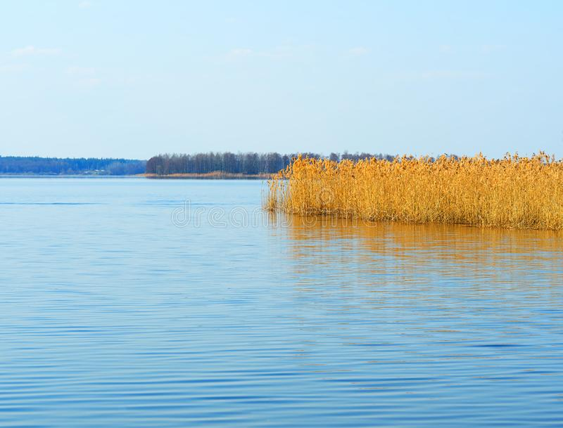 Hd предпосылки ландшафта реки подпора стоковые фото