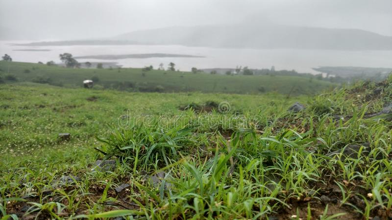 Grass hd picture with lake view stock photo